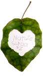 Nature School NZ